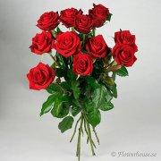 Vacker bukett med ett dussin röda rosor.
