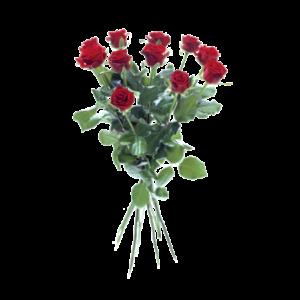 12 röda rosor i en flott bukett.