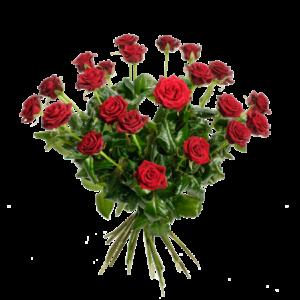 Blombukett med 24 st röda rosor.