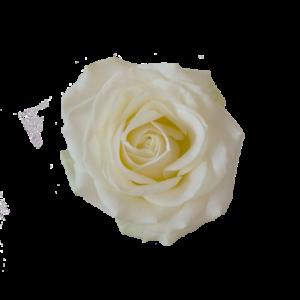Vita rosor, välj antal själv hos Interflora.